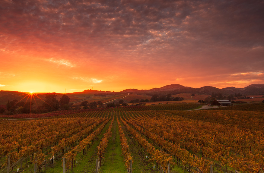 Pôr do sol, Napa Valley