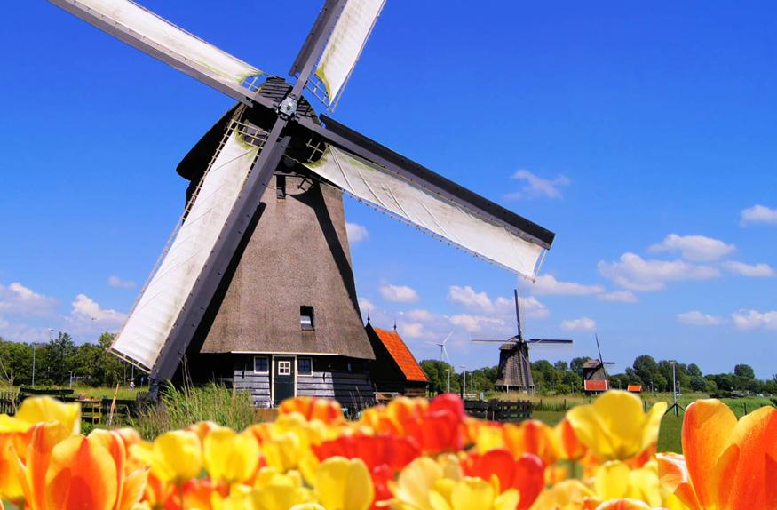 Tradicional moinho de vento